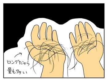 抜け毛4.jpg