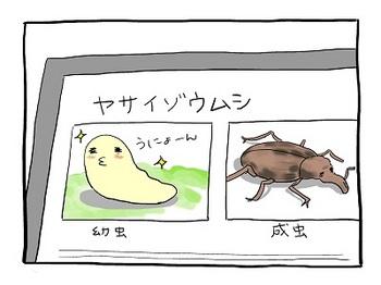 unyoko14.jpg