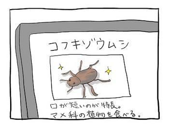 unyoko25.jpg